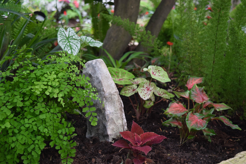 Lush Perennial Landscape Design