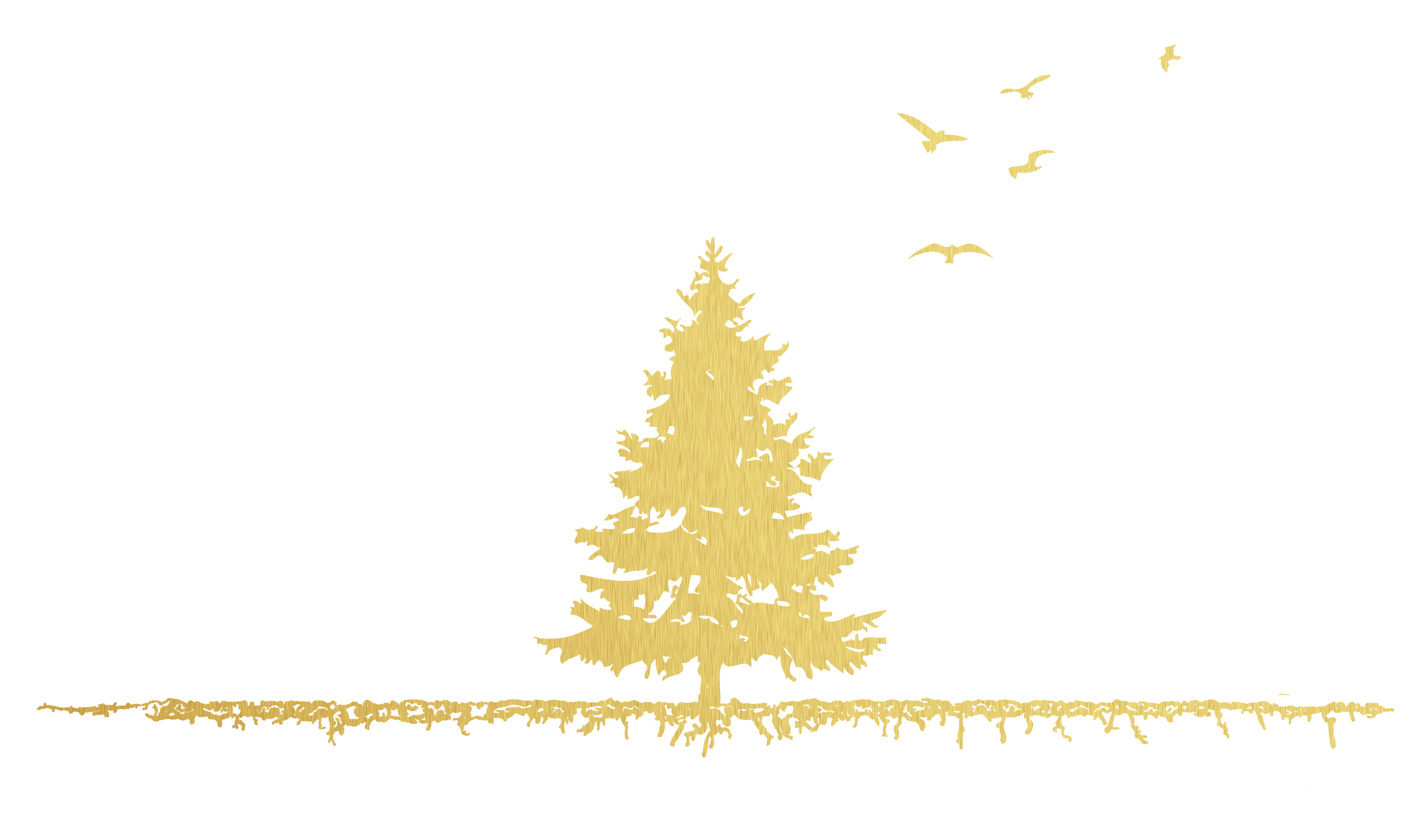 Tree+Bird-Logo - Tannenbaum Design Group